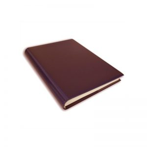 Box of 5 Maroon Magazine Binders
